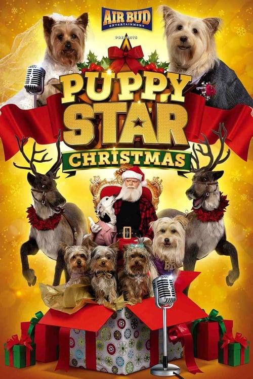 FILM Puppy Star Christmas 2018 Film Online Subtitrat in Romana – 8Felicia1